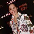 Christiane Torloni pode entrar no elenco da próxima fase de 'Salve Jorge'