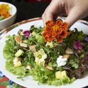 Fácil e rápido: aprenda a montar uma salada especial com castanhas e tofu!