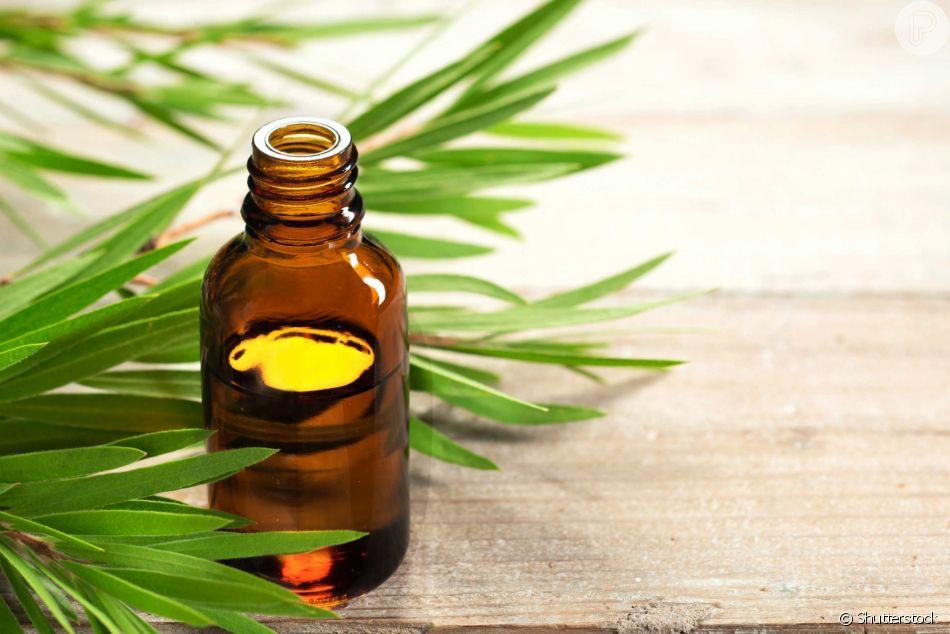 O óleo de melaleuca promete uma série de benefícios para o cabelo e para a pele