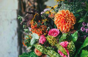 Flores na rotina de beleza: conheça os benefícios para a pele