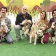 Carmo Dalla Vecchia, Francisco Cuoco, Priscila Fantin e Fiuk posam com os cachorros em encontro para o quadro 'Cachorrada VIP', do 'Domingão do Faustão', que volta ao ar em 2013
