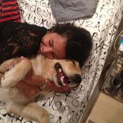 Yanna Lavigne, namorada de Bruno Gissoni, posta foto com a cadela do ator