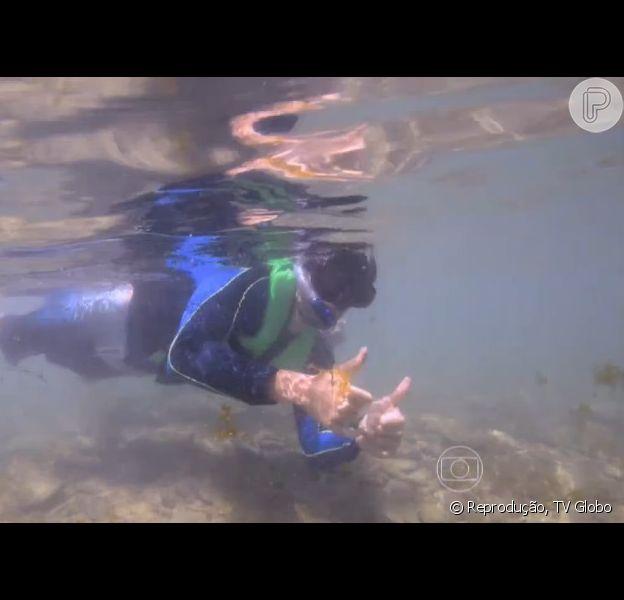 Ricardo Tozzi nada com tubarões em Fernando de Noronha