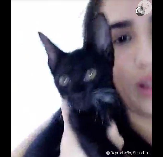 Lívian Aragão brincou ao adotar gato encontrado em circo: 'Não sei se ele é um gato ou um coelho'