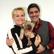 Relembre famosos como Xuxa e Luciano Huck que passaram por susto em voos!