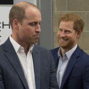 Príncipe William vibra com noivado de Harry:'Fim dos assaltos à minha geladeira'