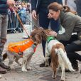 Kate Middleton faz carinho em cachorros em evento para evento em  Cumbria, no Reino Unido, nesta terça-feira, dia 11 de junho de 2019