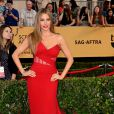 Sofia Vergara veste Donna Karan no Screen Actors Guild Awards 2015
