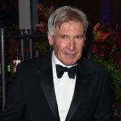 Harrison Ford é submetido a duas cirurgias após acidente de avião na Califórnia