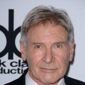 Harrison Ford tem alta hospitalar e já foi flagrado dirigindo, diz site