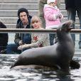 Taylor Swift e Harry Styles assistem a espetáculo de leões marinhos no Central Park, em Nova York