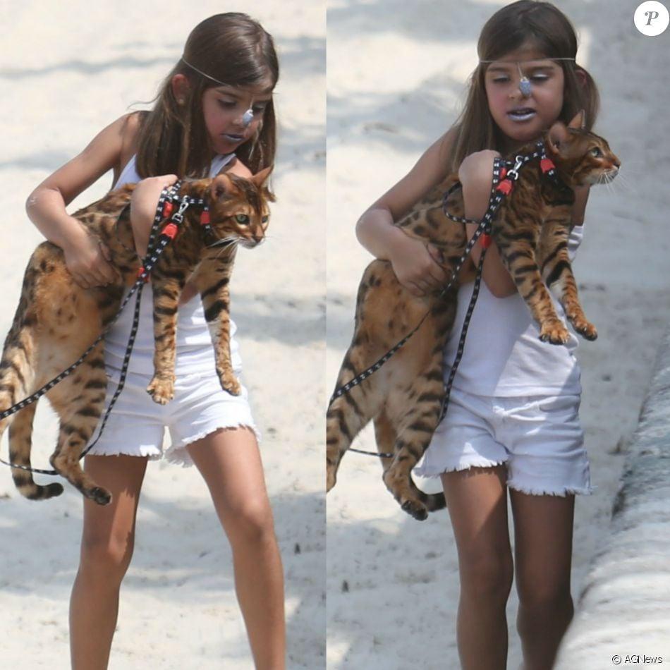 Sofia, filha de Grazi Massafera e Cauã Reymond, leva gato para passear em praia do Rio