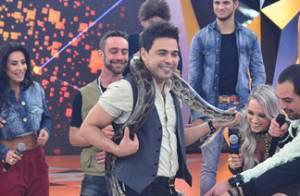 Zezé Di Camargo se enrola em cobra durante programa 'Legendários', da Record