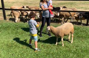 Filha de Patricia Abravanel imita som de ovelha: 'O melhor é a Jane fazendo bé'