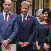 Príncipe William critica Harry: 'Sempre abracei meu irmão. Não posso mais'