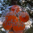 Festa íntima de Marina Ruy Barbosa teve mesa de bolo decorada e balões