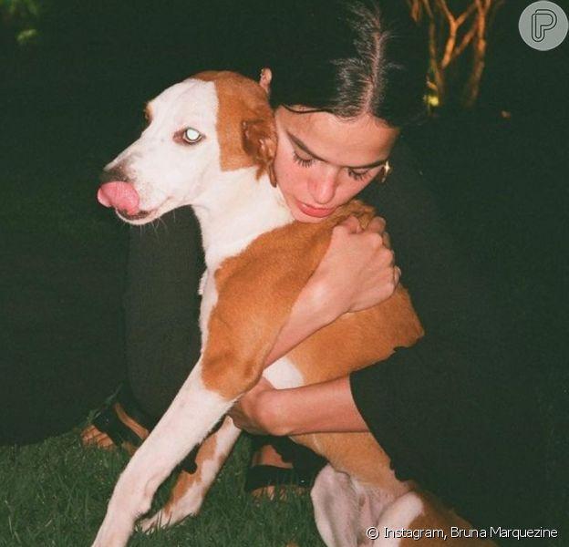 Bruna Marquezine exibe fotos com cachorros. Veja!