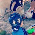 Filho de Sthefany Brito curtiu  dia de sol ao lado dos cachorros de estimação