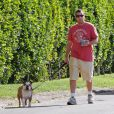 Adam Sandler passeia com o seu cachorro Matzoball