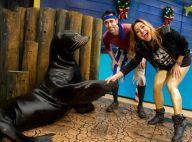 Sabrina Sato brinca com leão marinho em parque aquático na Flórida, nos EUA