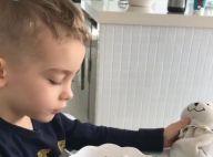 Filho de Ana Hickmann ganha coelhinho de verdade na Páscoa: 'Caça aos ovos!'