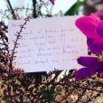Juliana Paes exibiu o bilhete recebido pelo marido em seu Instagram