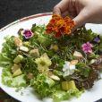 O menu da Levê, como não poderia deixar de ser, também conta com diversas opções sem carne: ' Rotulamos alguns dos nossos pratos de vegano e vegetariano para as pessoas saberem o que leva, mas nossos pratos quase não usam leite, por exemplo'
