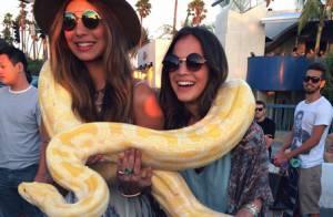 Bruna Marquezine brinca com cobra durante passeio nos EUA: 'Morrendo de medo'