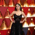 Salma Hayek apostou na transparência na 89ª edição do Oscar, em 2017. A atriz escolheu um modelo sexy, de renda da Alexander McQueen
