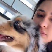 Simone mostra travessura de cachorro filhote com chinelo Gucci do marido. Veja!