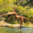 Grazi Massafera mostrou corpo sequinho em fotos de biquíni em Mato Grosso
