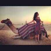 Katy Perry faz turismo em Dubai e posa ao lado de camelo